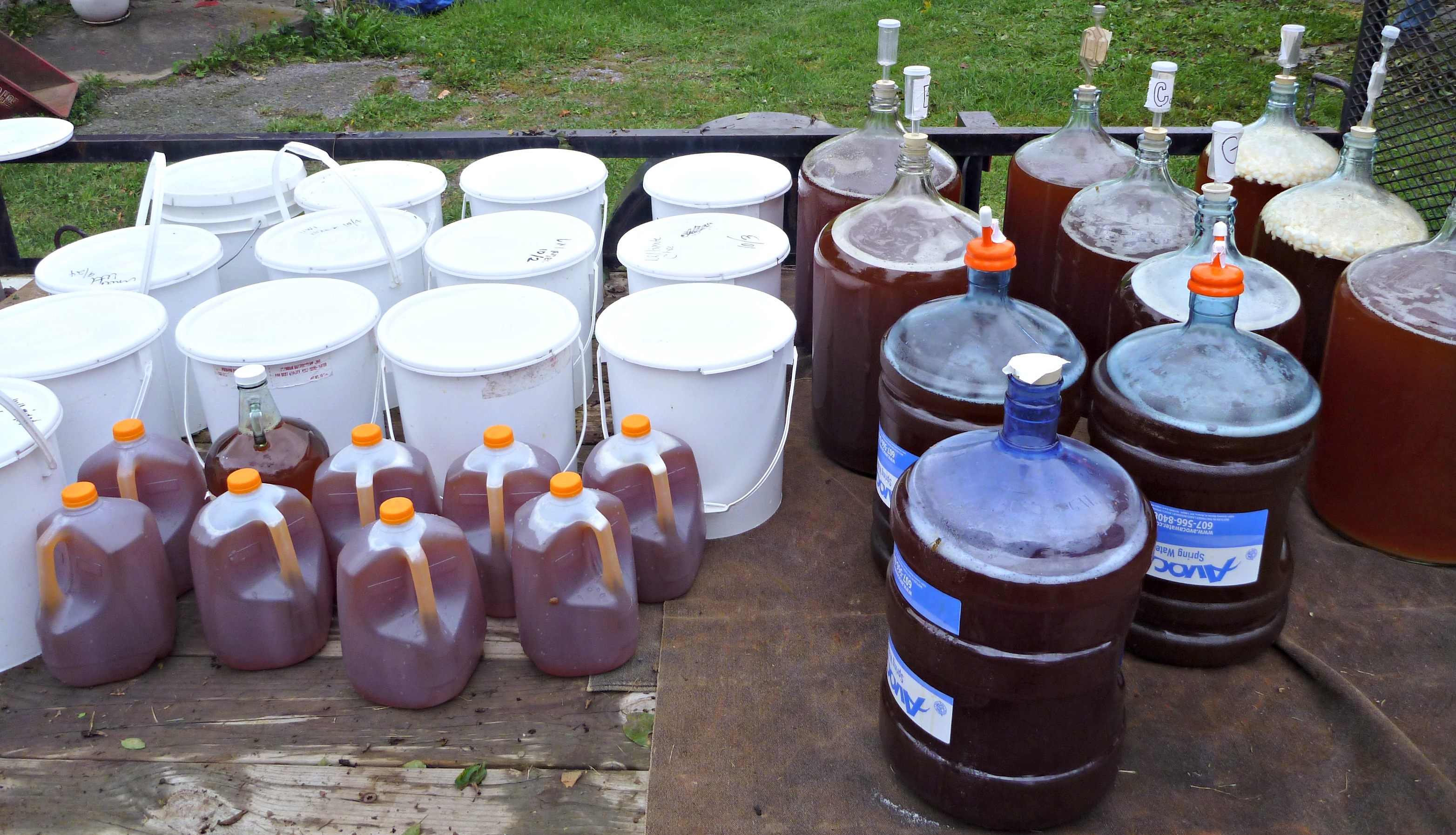 Now the fun part: MAKING APPLE JUICE INTO HARD CIDER