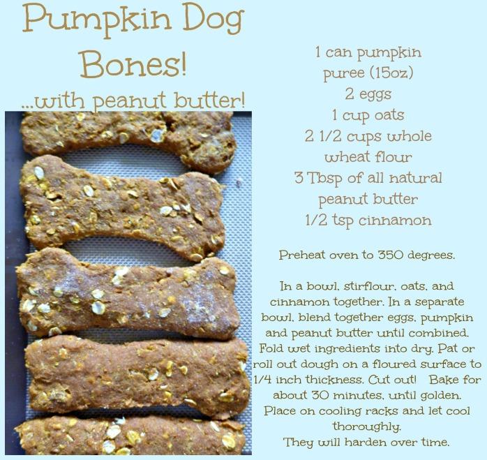 Pumpkin Dog Bones