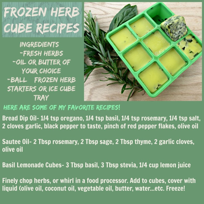 Frozen Herb Cube Recipes
